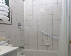 Twin Fern Bathtub