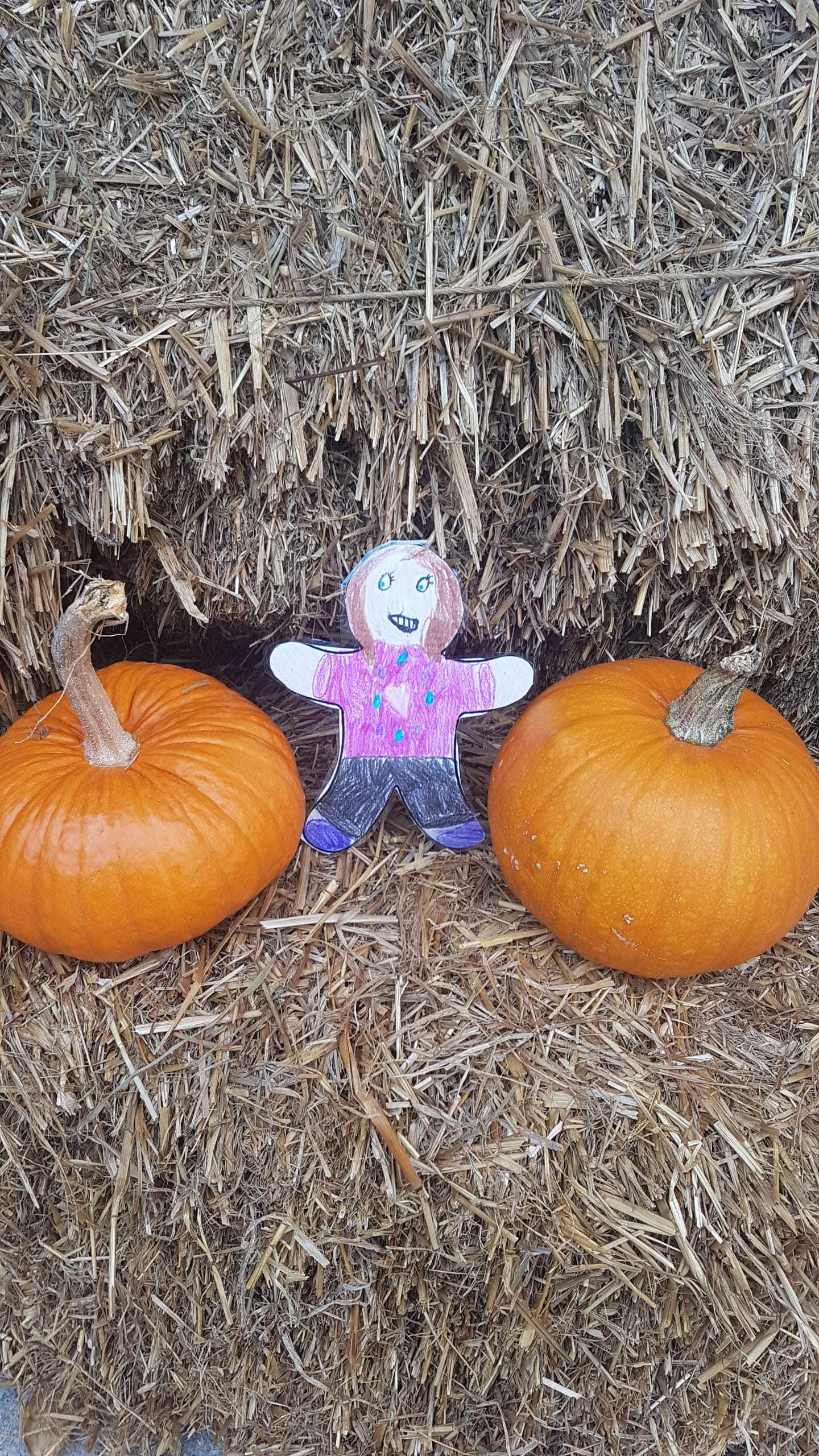Flat Kailyn And Pumpkins